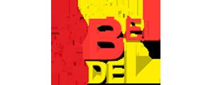 """Партнер Благотворительного Фонда """"Рука помощи"""" г. Тверь Бел-Дел групп"""